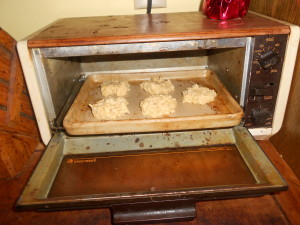 Toaster Oven Cookies