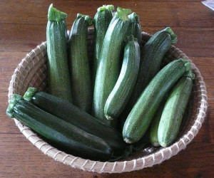 Lots of zucchini for silky gingered zucchini soup